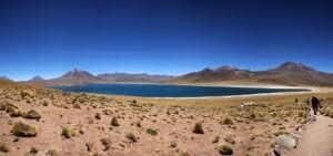 Altiplano_2.jpg
